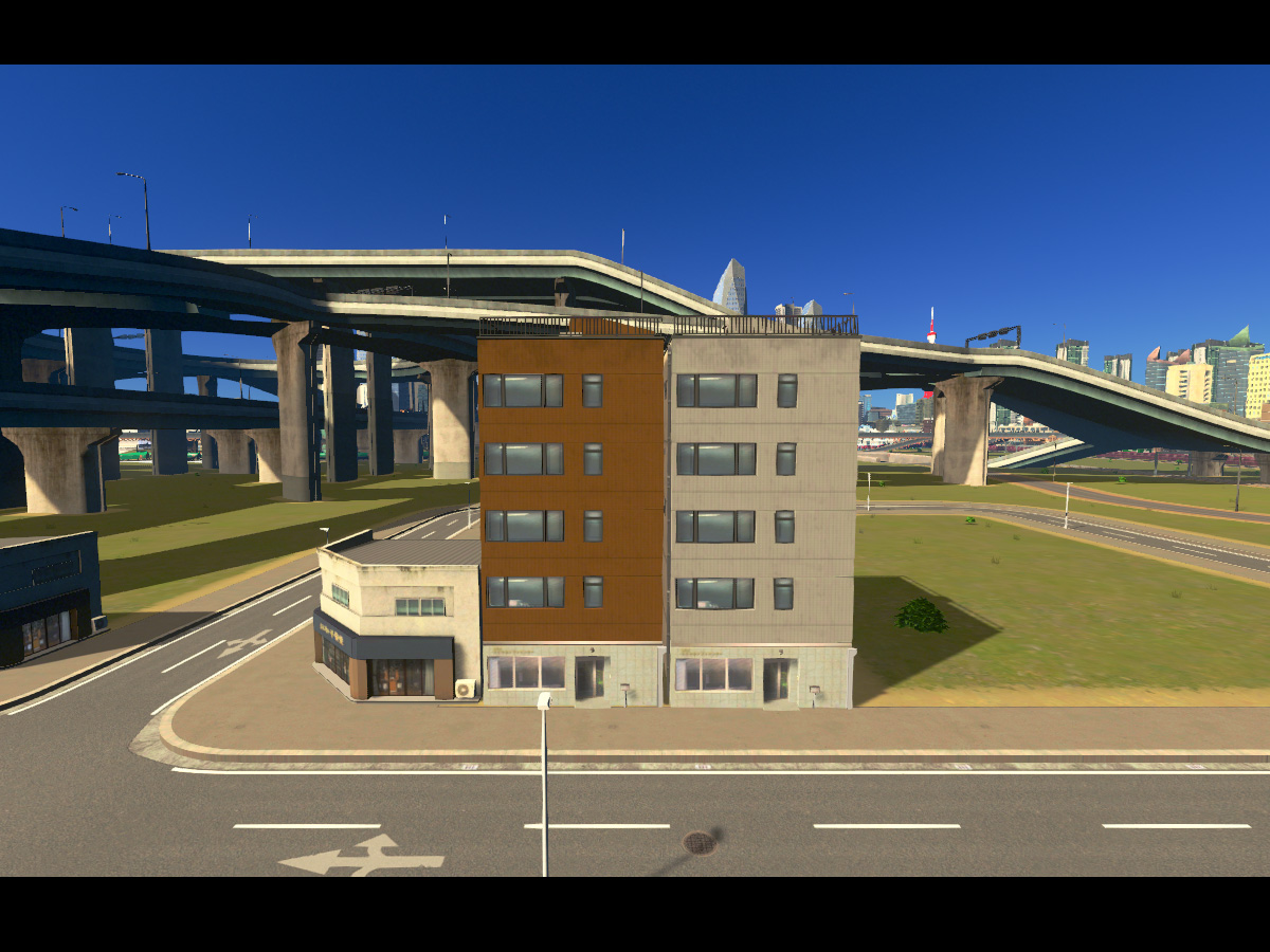 Cities_Skylines-1447
