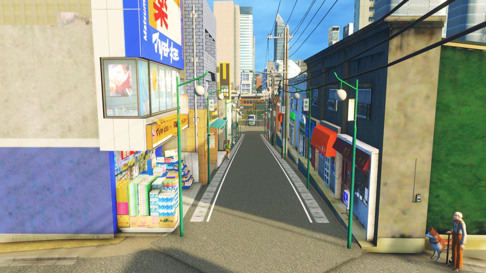 Cities_Skylines-2293